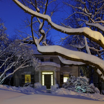 Tree and House with Snow
